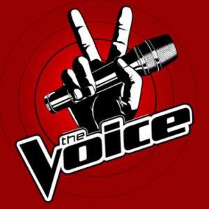 Logo The Voice. band huren voor een feestje? Gitaarmuziek, pop, rock, covers, blues, jazz, funk, soul. Akoestische band.
